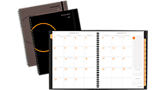 2017 Plan.Write.Remember.® Monthly Planner (705260_17) (Item # 705260_17)