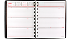 2016 Weekly-Monthly Appointment Book (70650_16) (Item # 70650_16)