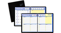 2017 QuickNotes Weekly-Monthly Appointment Book (7601_17) (Item # 7601_17)