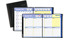 2017 QuickNotes Weekly-Monthly Appointment Book - Large (7605_17) (Item # 7605_17)