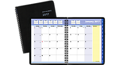 2017 QuickNotes Monthly Planner (7608_17) (Item # 7608_17)