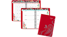 2017 Playful Paisley Premium Desk Weekly-Monthly Appointment Book (952P-200_17) (Item # 952P-200_17)