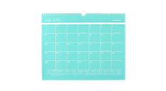2015 - 2016 Color Play Academic Monthly Wall Calendar (AYCP8T_16) (Item # AYCP8T_16)