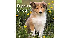 2017 Puppies Mini Bilingual (French-English) Calendar (DDMF47_17)  (Item # DDMF47_17)