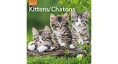 2017 Kittens Mini Bilingual (French-English) Calendar (DDMF49_17)  (Item # DDMF49_17)