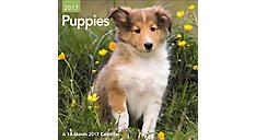 2017 Puppies Mini Wall Calendar (DDMN47_17) (Item # DDMN47_17)