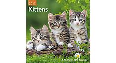 2017 Kittens Mini Wall Calendar (DDMN49_17) (Item # DDMN49_17)