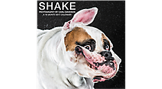 2017 SHAKE: Photography by Carli Davidson Wall Calendar (DDW001_17) (Item # DDW001_17)
