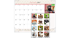 2017 Puppies Monthly Desk Pad (DMD166_17) (Item # DMD166_17)