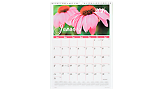 2016 Recycled Flower Garden Monthly Wall Calendar (DMW300_16) (Item # DMW300_16)