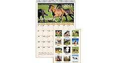 2017 Horses Monthly Wall Calendar (DMW401_17) (Item # DMW401_17)