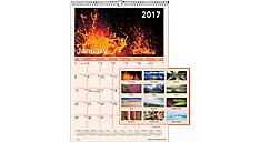 2017 Mother Nature Monthly Wall Calendar (DMW403_17) (Item # DMW403_17)