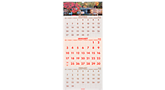 2016 Recycled Scenic 3-Month Wall Calendar (DMW503_16) (Item # DMW503_16)