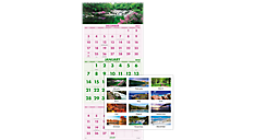 Scenic 3-Month Wall Calendar (DMW503) (Item # DMW503)
