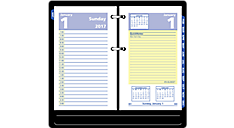 2017 QuickNotes Daily Desk Calendar Refill (E517_17) (Item # E517_17)