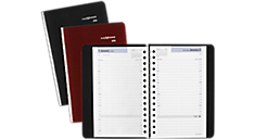 2016 DayMinder® Daily Appointment Book (G100_16) (Item # G100_16)