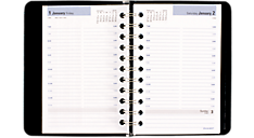 2016 DayMinder® Daily Appointment Book - Small (G202_16) (Item # G202_16)