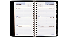 2016 DayMinder® Weekly Pocket Appointment Book (G250_16) (Item # G250_16)