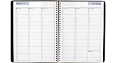 2016 DayMinder® Weekly Appointment Book (G520_16) (Item # G520_16)