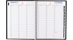 2016 Breast Cancer Awareness DayMinder® Premiere Weekly Planner (G520P_16) (Item # G520P_16)