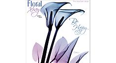 2017 Floral Xray Wall Calendar (HTH523_17) (Item # HTH523_17)