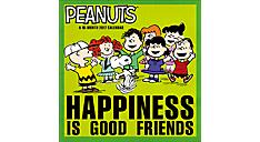 2017 Peanuts Wall Calendar (HTH535_17) (Item # HTH535_17)
