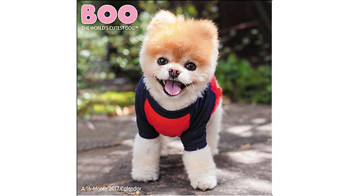 Mead® 2017 BOO The World's Cutest Dog™ Wall Calendar ...
