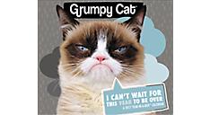 2017 Grumpy Cat Year-In-A-Box Calendar (LMB247_17) (Item # LMB247_17)