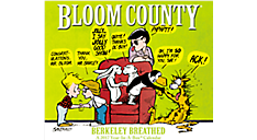 2017 Bloom County Year-In-A-Box Calendar (LMB255_17) (Item # LMB255_17)