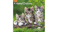 2017 Kittens Bilingual (French-English) Wall Calendar (LMF134_17)  (Item # LMF134_17)