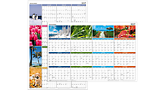 2017 Seasons in Bloom Erasable Wall Calendar (PA133_17) (Item # PA133_17)
