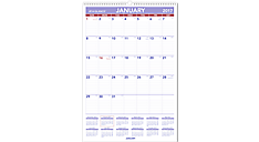 2017 Monthly Wall Calendar (PM3_17) (Item # PM3_17)