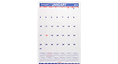 2016 Wall Calendar with Additional Features - Large (PM3P_16) (Item # PM3P_16)
